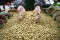 China is the world's largest importer of soybeans. Photo: Reuters