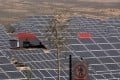 Beijing said any construction of new solar power projects must be halted until further notice, and the tariffs on electricity generated from clean energy will be lowered. Photo: AP