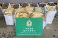 The haul had an estimated market value of HK$420,000 (US$53,520). Photo: Handout