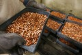 The Democratic Republic of Congo is one of the world's top producers of copper and cobalt. Photo: Reuters