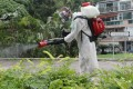 Mosquito control work being carried out in Cheung Chau. Photo: Edward Wong