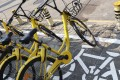 Ofo bikes seen parked on the street in the Futian district of Shenzhen. Photo: SCMP/Roy Issa