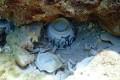 Ceramic bowls found amid the Benares shipwreck. Photo: Handout