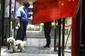 China has about 50 million registered dogs, according to the China Pet Products Association. Photo: AP