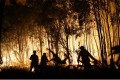 Firefighters battle a blaze on Fingerfield road at the Deepwater National Park area of Queensland on November 29, 2018. Photo: AFP