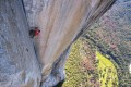 Alex Honnold climbs the 900-metre rock wall of El Capitan in California's Yosemite National Park. Photo: National Geographic/Jimmy Chin