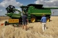 Australian barley growers have already been hit by a drought that has reduced supplies and raised prices. Photo: AFP