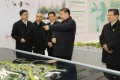 Chinese President Xi Jinping looks at a model of the planned development of the Xiongan New Area during a visit to Hebei province on January 16. Photo: Xinhua