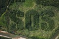 A giant SOS is carved into an oil palm plantation in Sumatra by Lithuanian artist Ernest Zacharevic to draw attention to deforestation. Photo: Ernest Zacharevic
