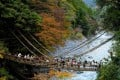 Crossing the few remaining suspended vine bridges in Lya Valley is a breathtaking experience. Photos: Alamy