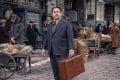 Dan Fogler became a household name after starring in Fantastic Beasts and Where to Find Them.