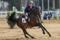 Clarissa Lyra, a member of Hong Kong's equestrian team. Photo: Hong Kong Jockey Club
