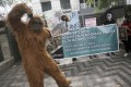 An activist in an orangutan costume protests outside the Chinese Consulate in Medan, Indonesia. Photo: AP