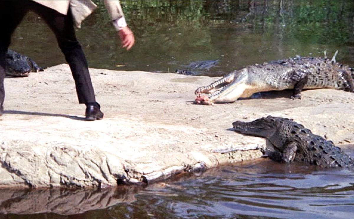 01111388b  You can t bribe crocodiles   it s not a Bond film