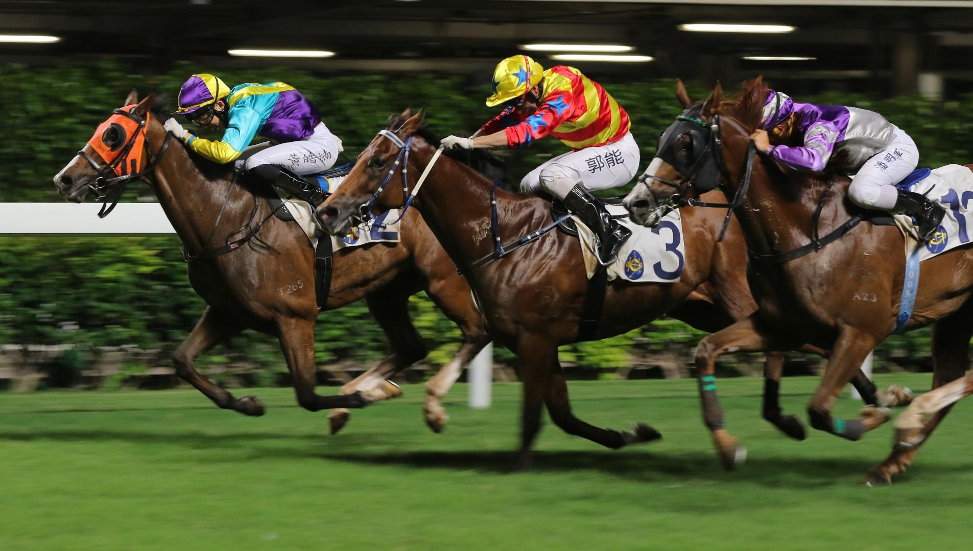 041eaf9b9f7c How an American gambler unlocked the secret to Hong Kong horse racing