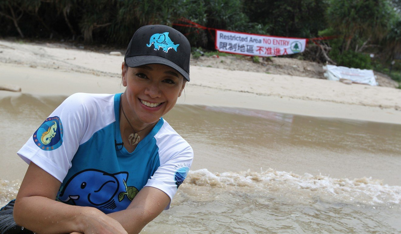 6696bfa9213a0 Actors and activists fight for endangered green sea turtles  nesting site  in Hong Kong