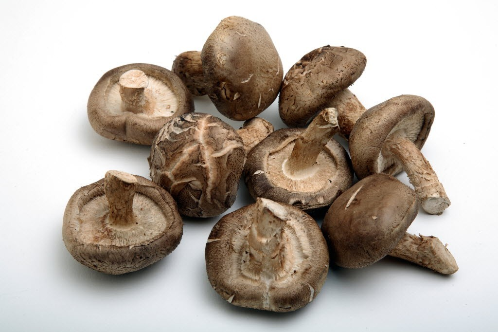 Why mushrooms are the latest essential ingredient in