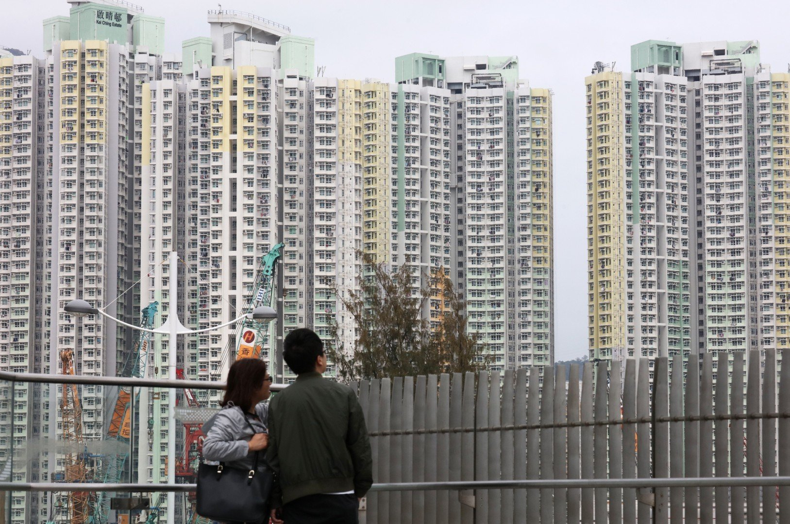 More young, single and highly educated Hongkongers on