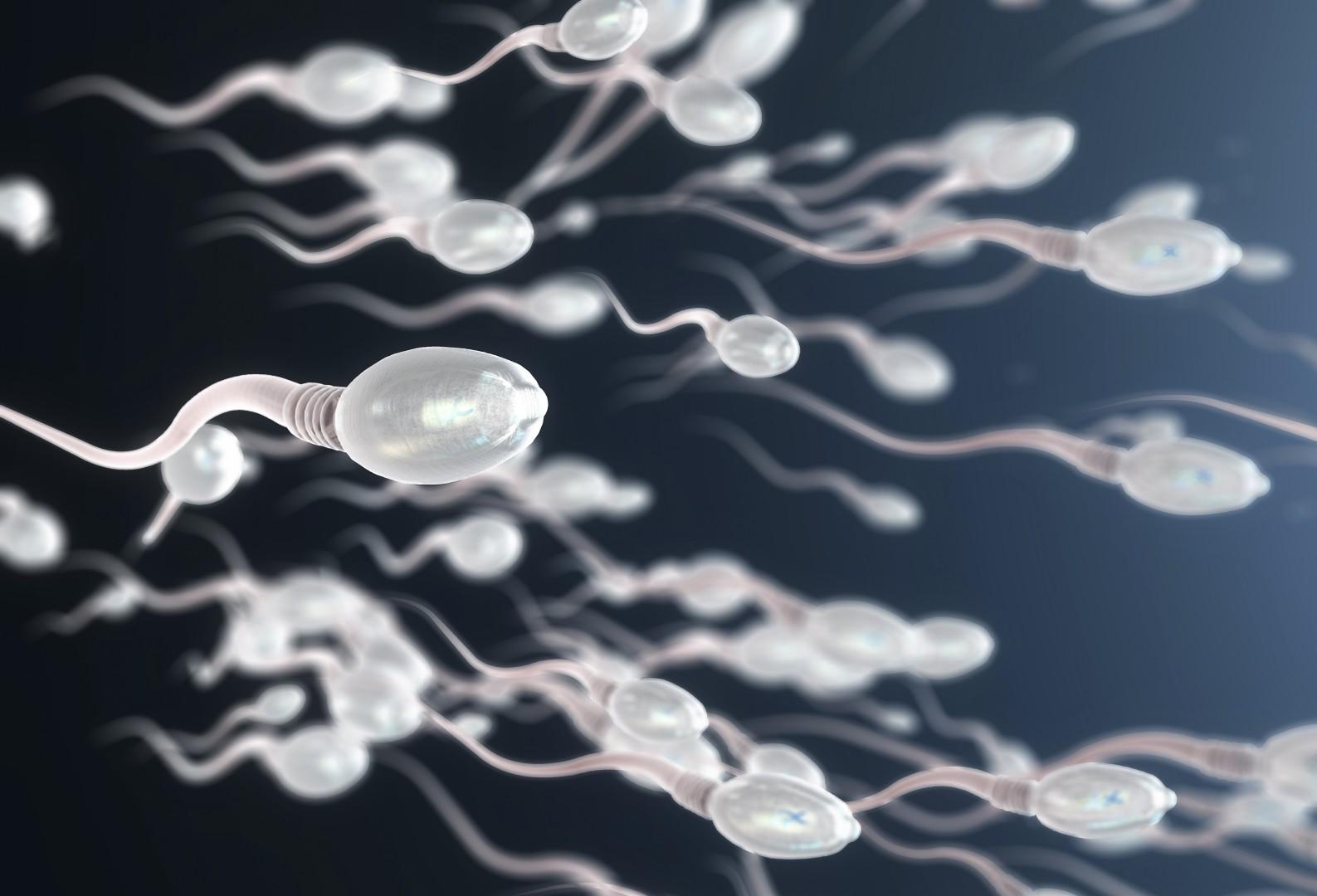 Master sperm silver the