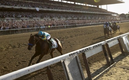 American Pharoah races away to win the Belmont Stakes, becoming the first Triple Crown victor since Affirmed in 1978. Photo: Reuters