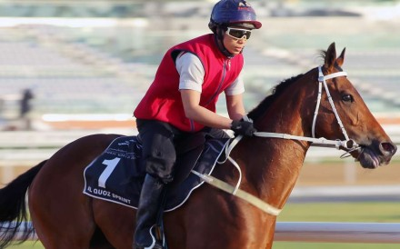 Peniaphobia galloping on the Meydan track in Dubai on Friday. Photos: Kenneth Chan