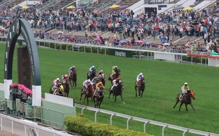 Despite wild weather, crowds flocked to Sha Tin for QE II Cup day and Champions Mile day.