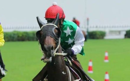 Pakistan Star went viral after his stunning last-to-first debut in July. Photo: Kenneth Chan
