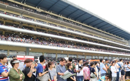 Fans at Seoul racecourse in September 2016. Photo: Kenneth Chan