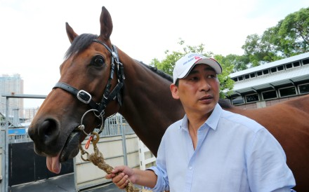 Trainer Michael Chang with Rich Tapestry. Photos: Kenneth Chan.