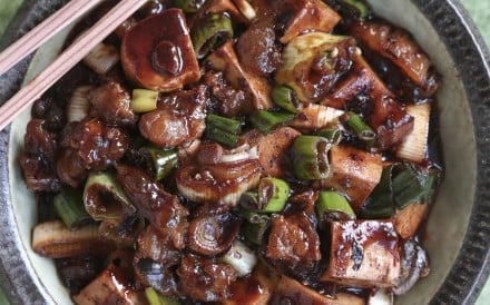 Susan Jung's recipes for mapo tofu with beef tendon and pan-friend tofu with chilli-soy sauce