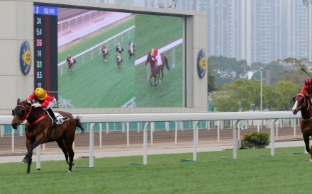 Dinozzo streets his rivals in the Group Three Centenary Vase. Photos: Kenneth Chan