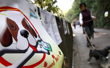 A poster warning dog owners to protect their pets from poisoned baits at Bowen Drive. Photo: Felix Wong