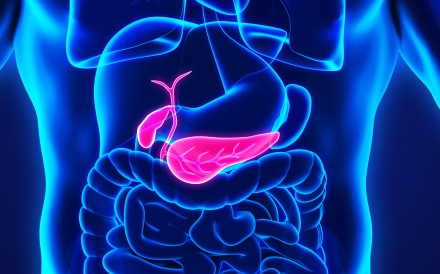 It's not a large organ, but it's a vital part of the human digestive system, producing insulin and other essential enzymes and hormones that help break down the food we eat