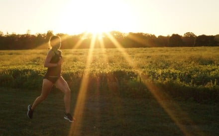 A runner in the fields. Photo: Mary Hui