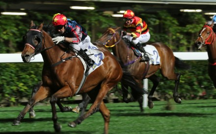 Neil Callan rides Spring Win to his second victory at Happy Valley last season. Photos: Kenneth Chan
