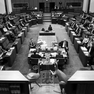 Australian politics