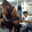 Children seen begging on the subway in Beijing have sparked fears that they may be victims of child trafficking. Photo: SCMP Pictures