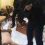 Crime Suppression Division police arrest French cybercrime fugitive Jonathan Verron at a house on Koh Samui, Surat Thani. Photo: Police via Wassayos Ngamkham/Bangkok Post