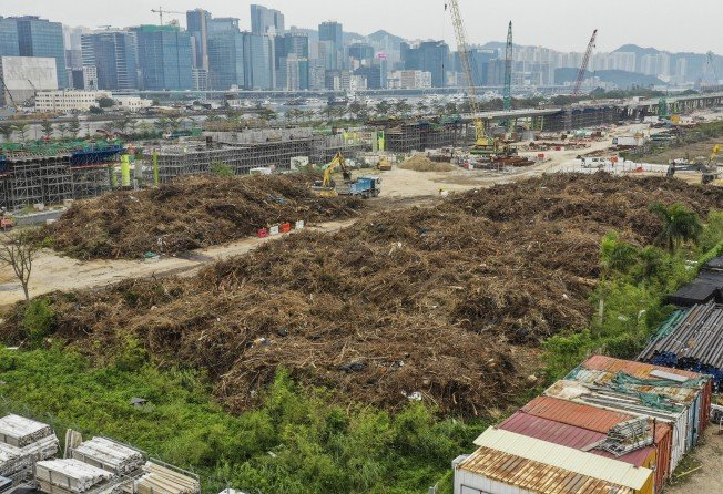 Hong Kong produced three times as much tree waste this year