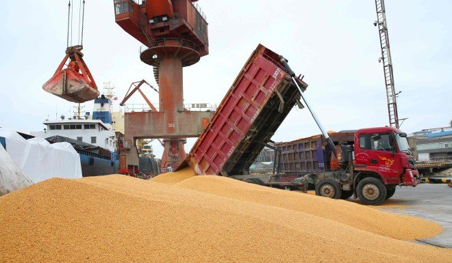 China needs soybeans to support its livestock industry.