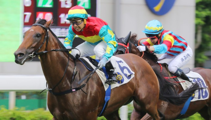 The honest Solar Hei Hei is the one to beat in the Hakka Cup at Sha Tin