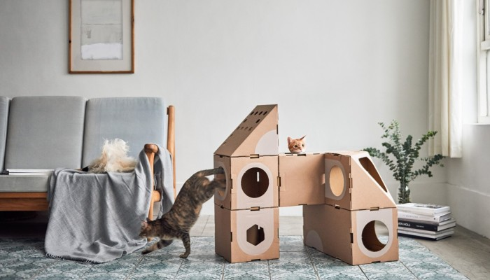 High-rise cat furniture for urban homes, from shelves that