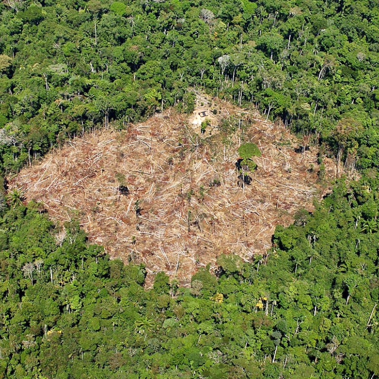 Brazil refuses to join pact to end deforestation by 2030