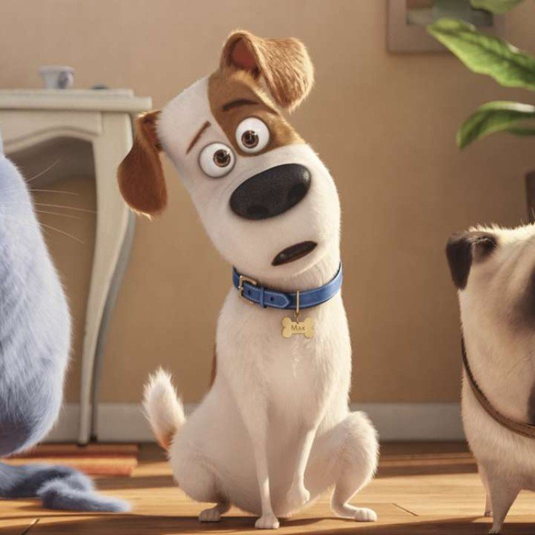Film Review The Secret Life Of Pets The Year S Cutest Cartoon