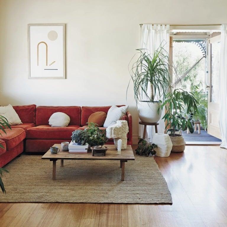 Indoor Plant Decoration In Living Room from cdn1.i-scmp.com