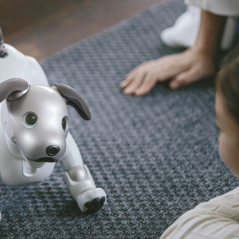 The truth about robot cats and dogs: can they replace real