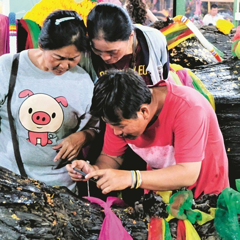 Lottery fever at Thai temples as public worship tree trunks