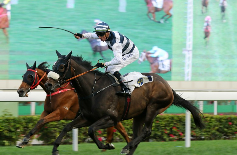 'China's Hawaii' bets on horse racing for tourism boom