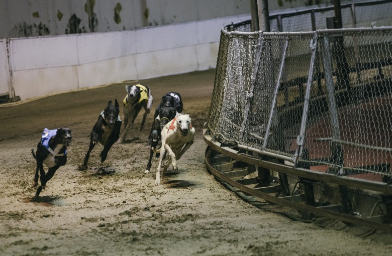 Dog days are over at Asia's last greyhound track