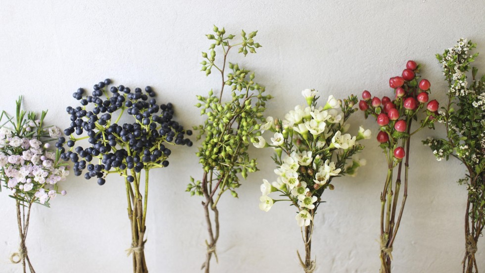 Flower power: six ways to preserve or present summer blossoms ...